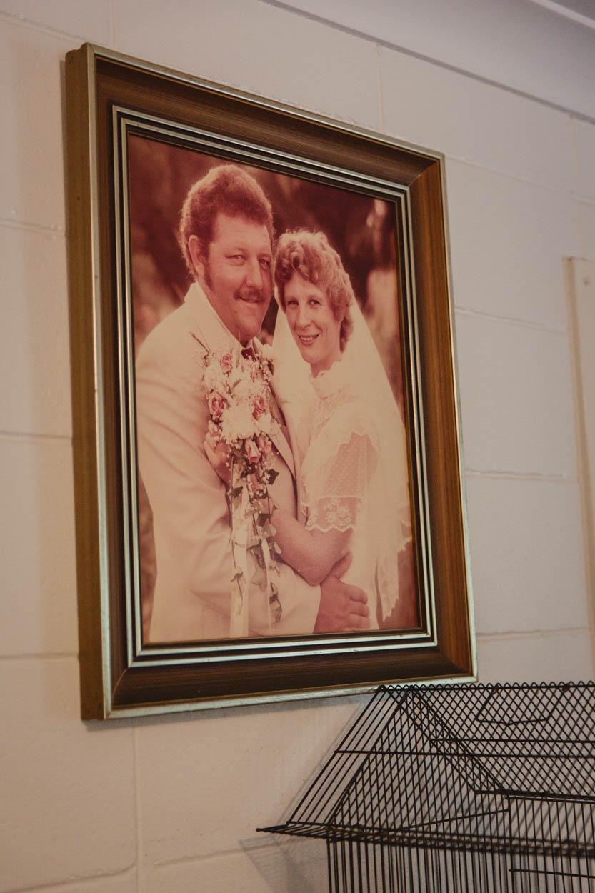 Nambour Pre Destination Wedding Photographers - Brisbane, Sunshine Coast, Australian Packages