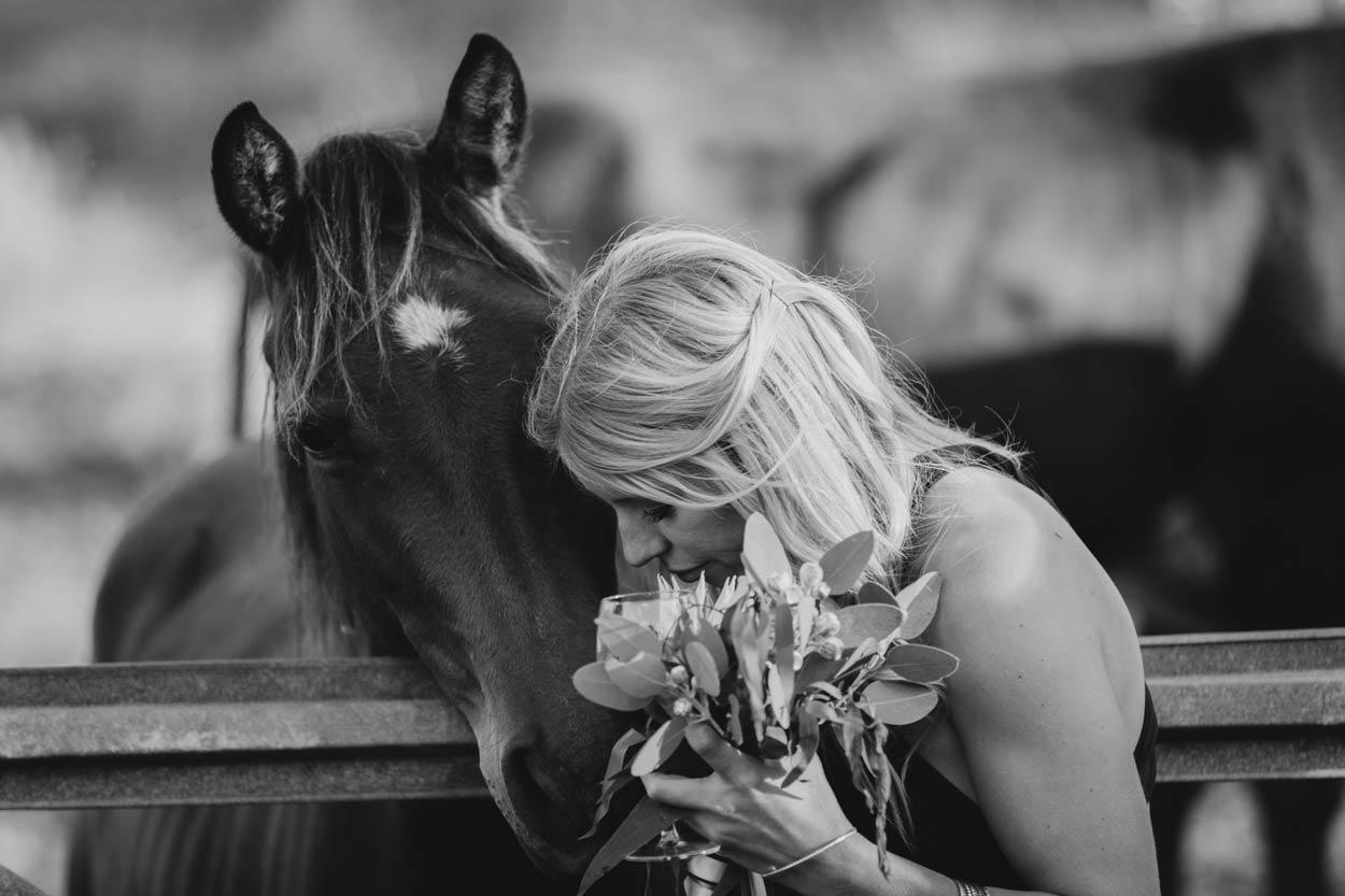 Intimate Maleny Destination Wedding Horse Portraits - Sunshine Coast, Brisbane, Australian