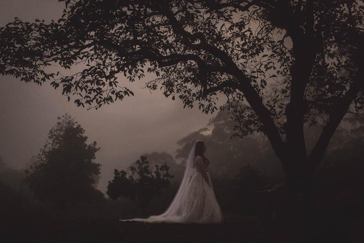 Nambour, Obi Obi Pre Destination Wedding Photographer - Sunshine Coast, Brisbane, Australian Blog