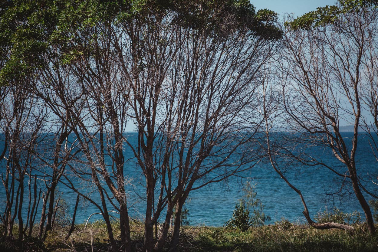 Noosa Pre Wedding Destination Photographers - Brisbane, Sunshine, Australian Photos Blog