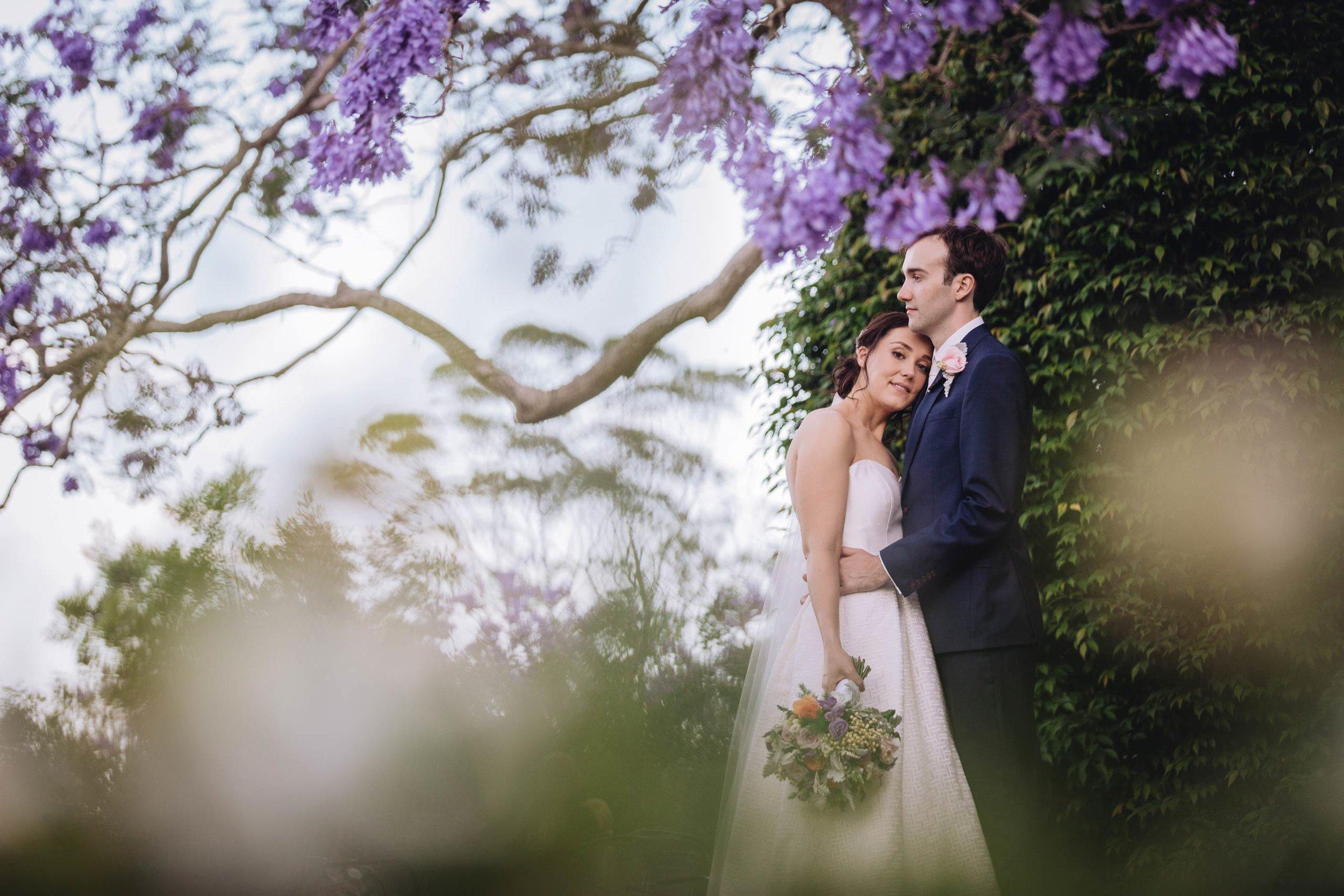 Spicers Clovelly Estate Wedding Destination Portraits - Montville, Sunshine Coast, Australian Photographer