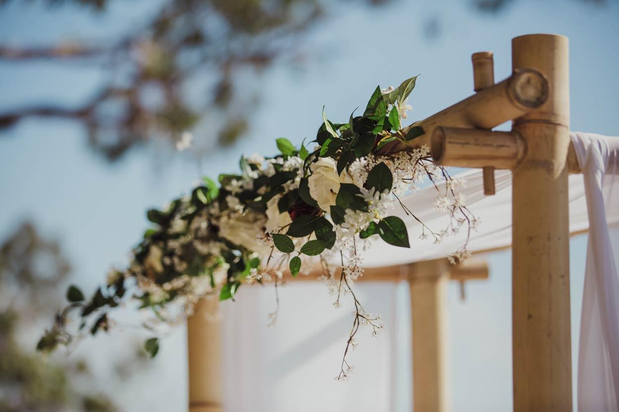 Flaxton Gardens Professional Pre Wedding Photographer - Brisbane, Sunshine Coast, Australian Blog