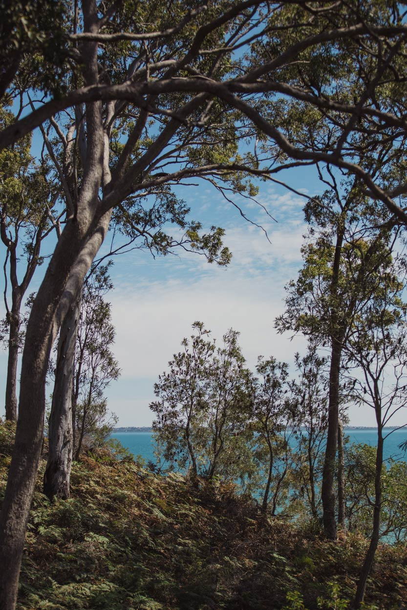 Noosa Heads, Sunshine Coast, Queensland Wedding - Australian Eco Destination Photographer Blog
