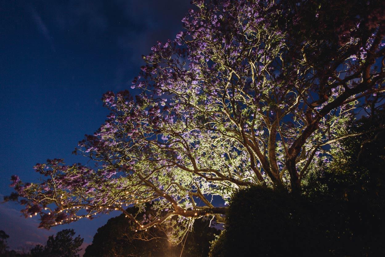 Best Australian Photographers in Queensland - Montville, Brisbane, Sunshine Coast Destination Wedding