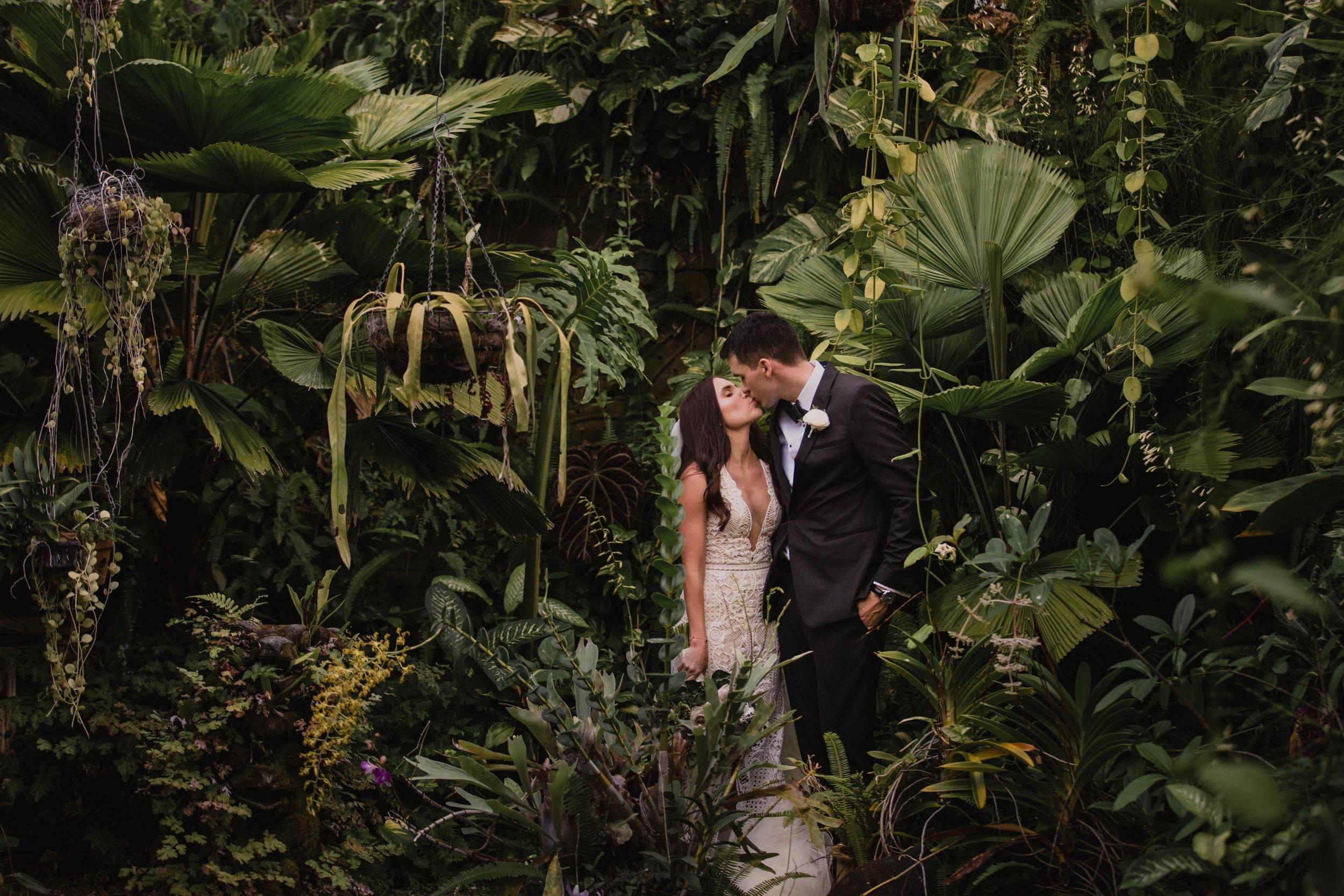 Top Maleny & Noosa Hinterland Destination Wedding Photographers - Sunshine Coast, Queensland, Australian Pro Pics