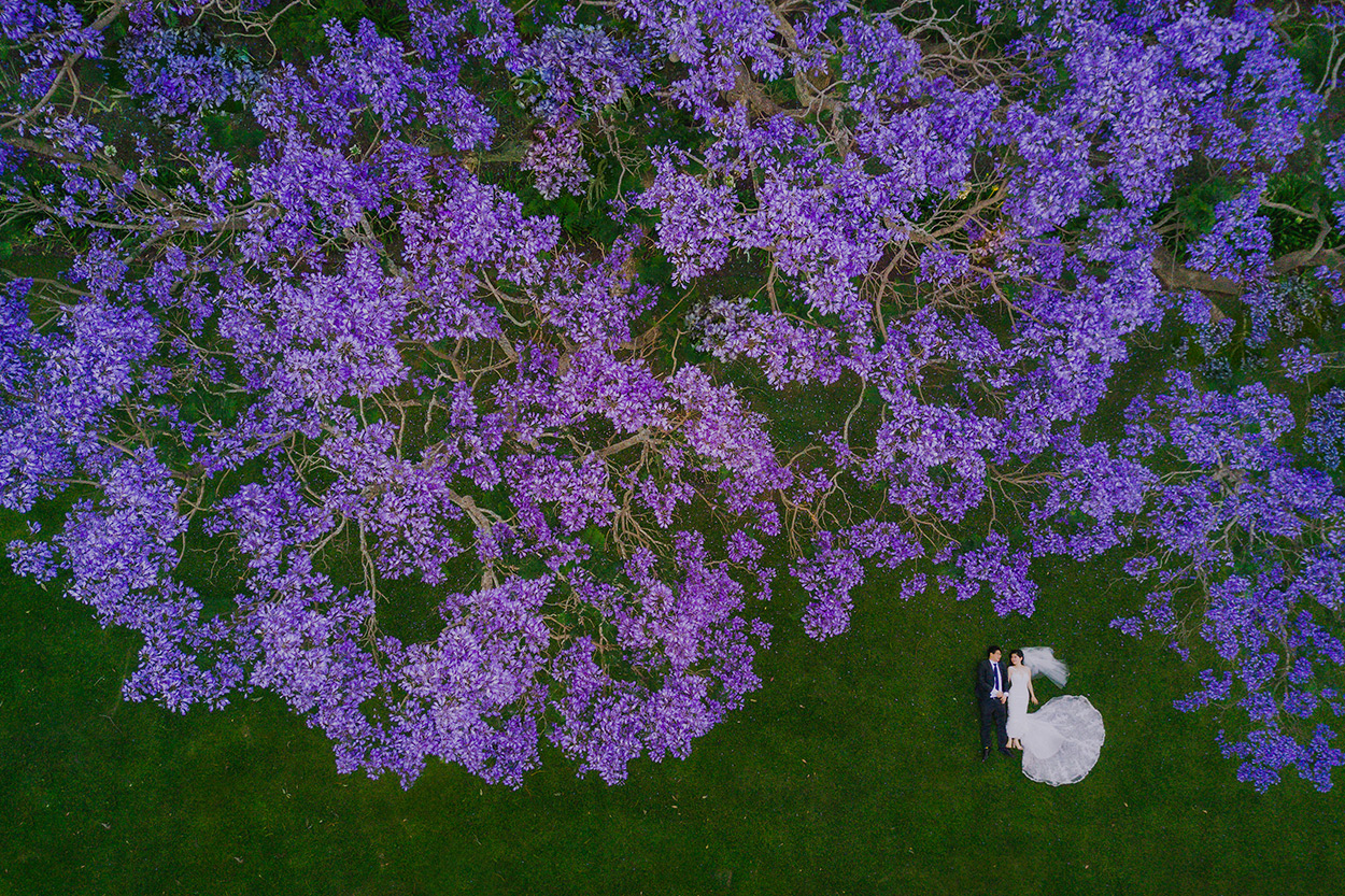 Gabbinbar Homestead, Toowoomba Destination Wedding Photographer - Sunshine Coast, Queensland, Australian Drone