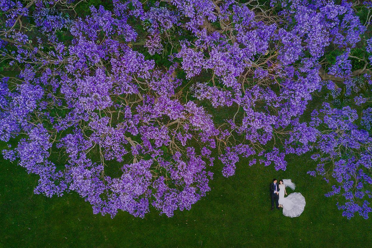 Gabbinbar Homestead, Toowoomba to Maleny Destination Wedding Blog Photographer - Sunshine Coast, Queensland, Australian Drone & Aerial Photos