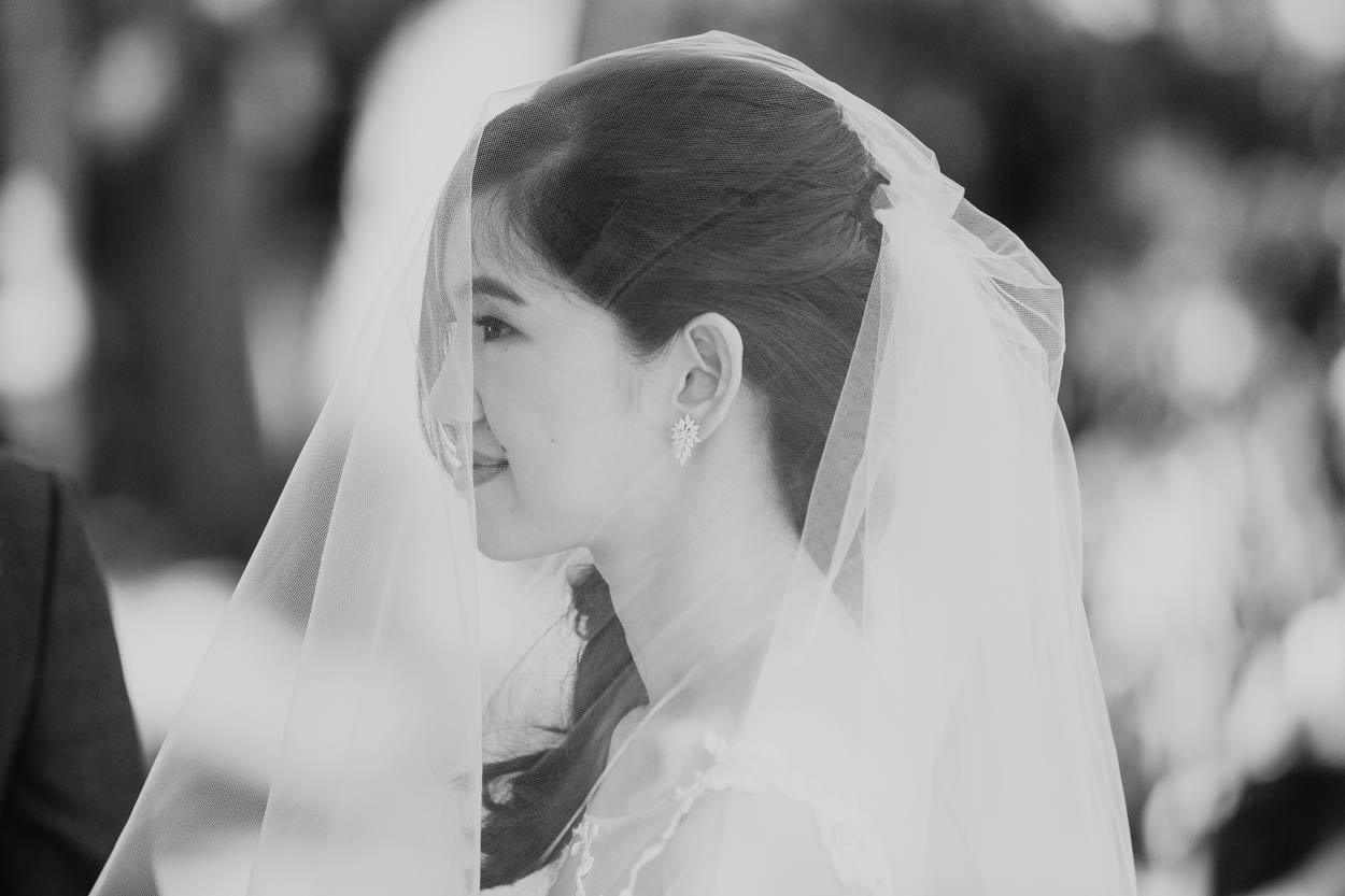 Best Maroochydore to Maleny Wedding Photographer - Sunshine Coast, Queensland, Australian Destination Blog
