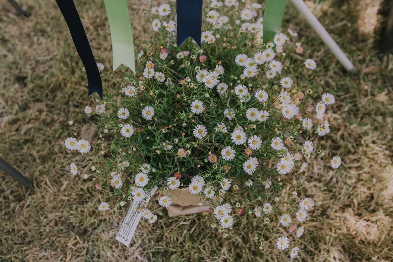 Candid Noosa & Bangalow Pre Destination Wedding Photographers - Sunshine Coast, Queensland, Australian Photos
