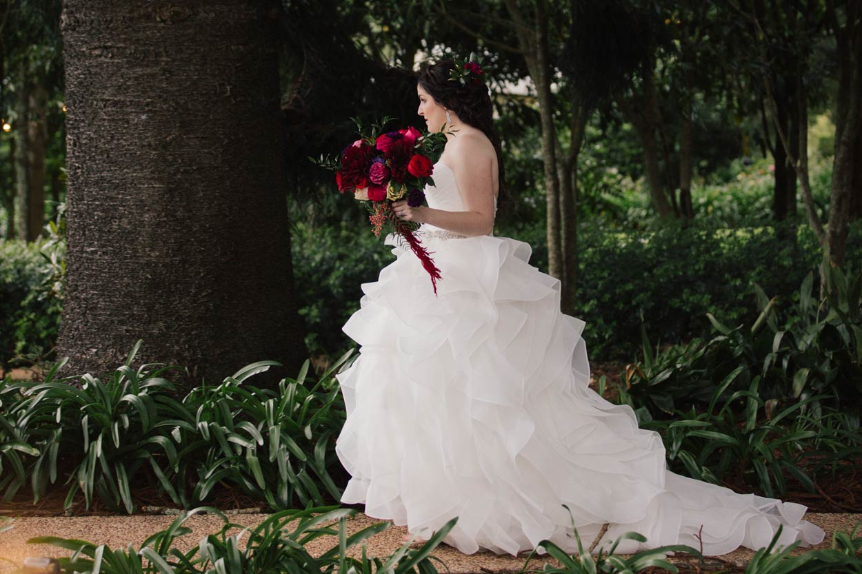 Montville & Maleny Candid Wedding Destination Elopement Photographer - Sunshine Coast, Queensland, Australian Photography
