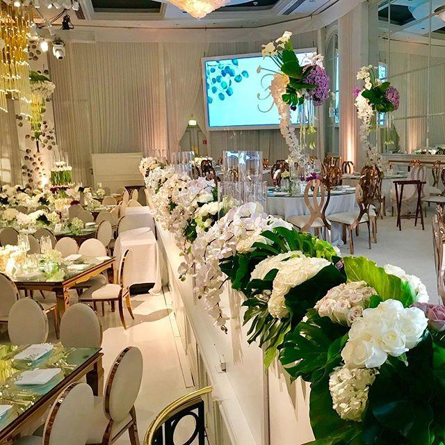Venue: @beverlywilshire  Cordinator: @internationaleventco @christyneo3  Lighting: @mjlightingdecor  Florist: @marksgarden . . . . #eventlighting #chandelier #floralchandalier #floralchandaliers #uplighting #lighting #wedding #weddings #elegantwedding #elegant #callalily #callalilies #floralarrangement #weddingideas #amazing #beautiful #welllit #BeverlyWilshire #InternationaleventCo #MJLightingandDecor #MarksGarden