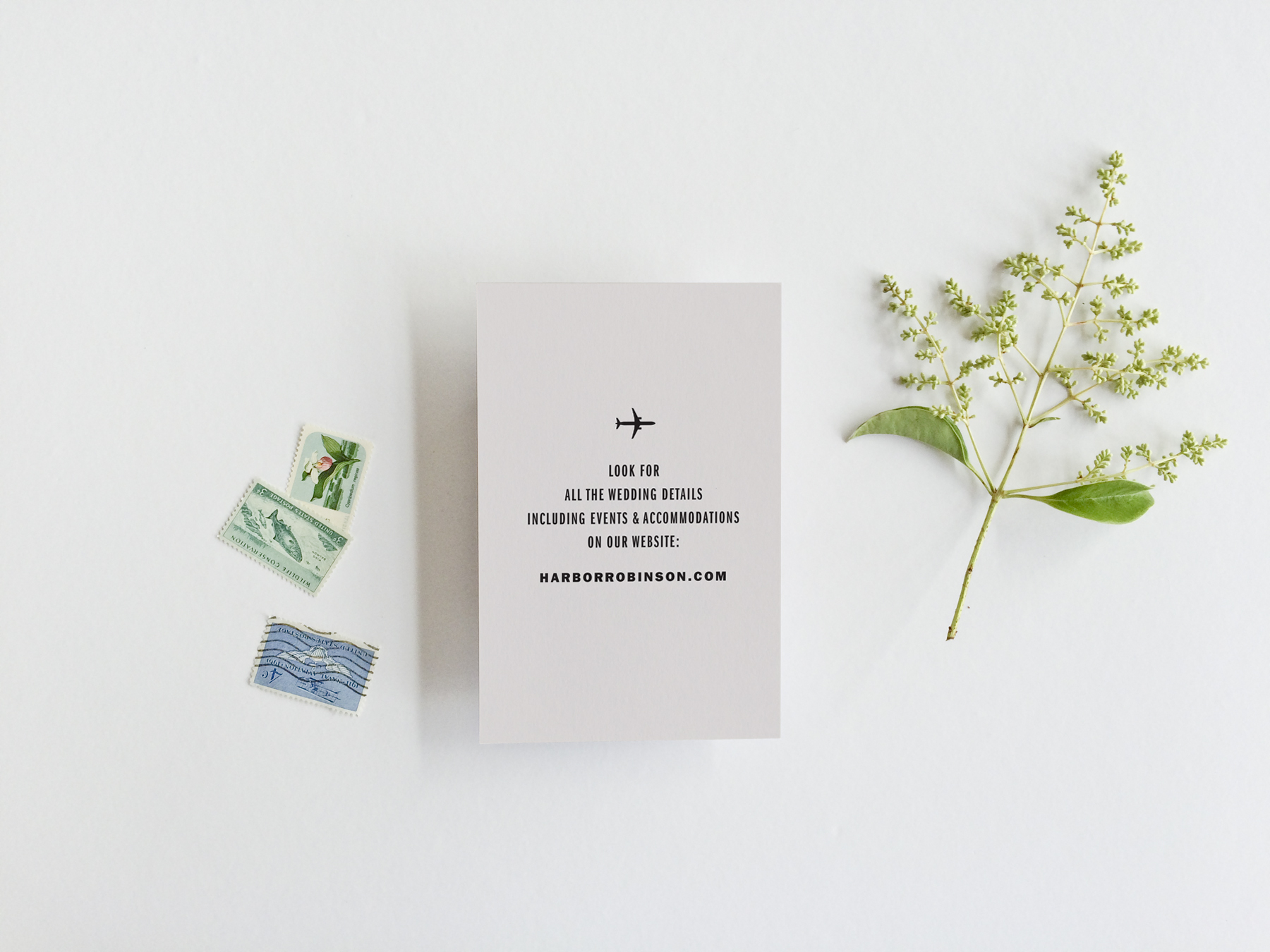 destination-airplane-wedding-invitation.jpg