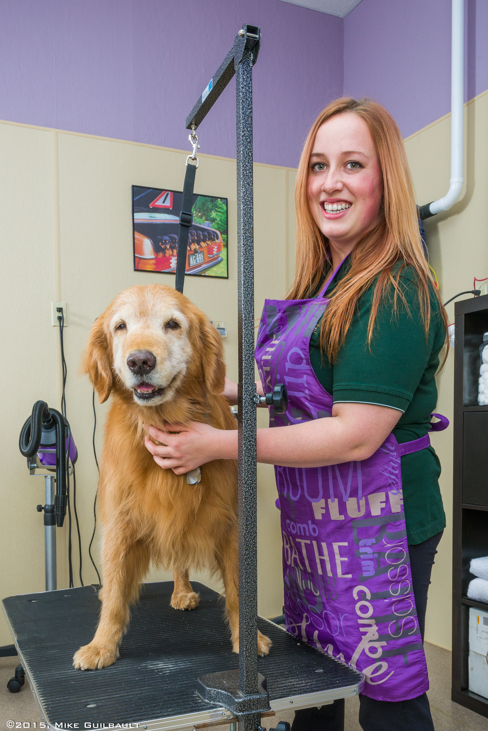 Portrait of a dog groomer