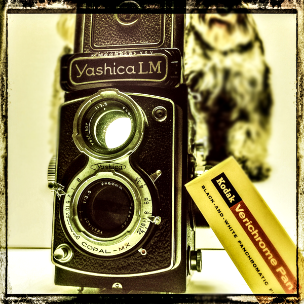 Yashica LM Twin-Lens Reflex