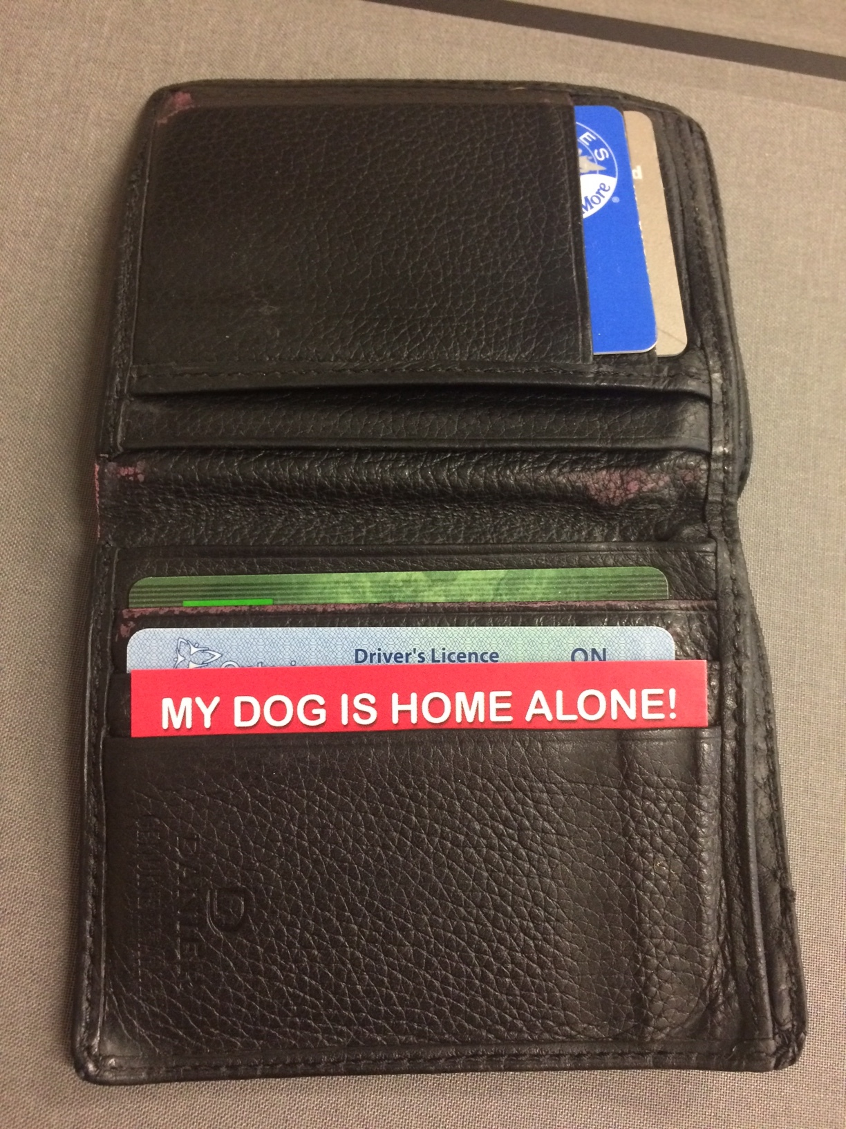 """The """"My Dog is Home Alone"""" Card in action!"""