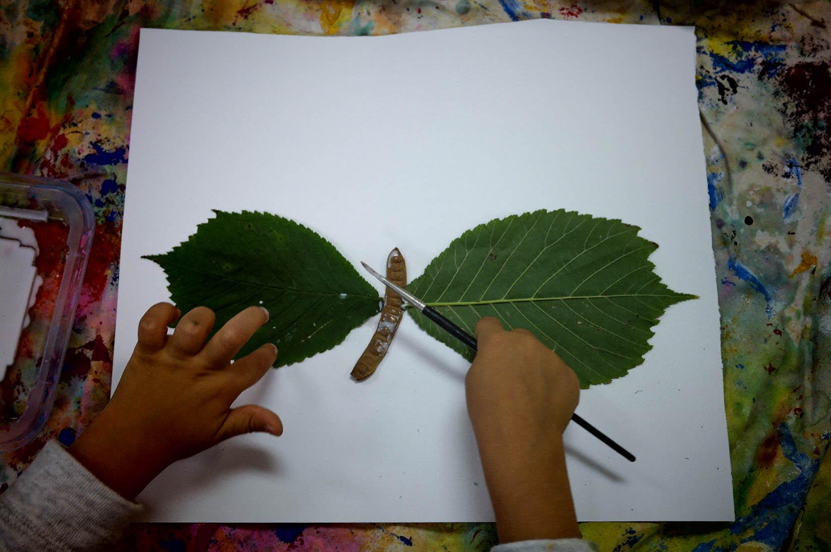 Leaf Butterfly (1 of 1).JPG