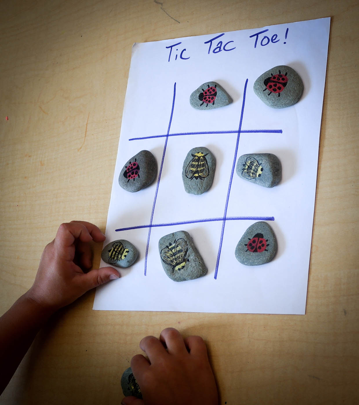 Lady Bug & Bumble Bee Tic Tac Toe (1 of 1).JPG