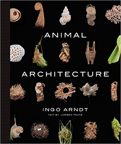 Animal Architecture.jpg