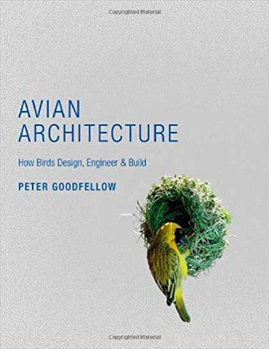 Avian Architecture.jpg