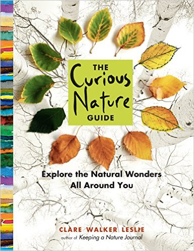 Curious Nature Guide.jpg