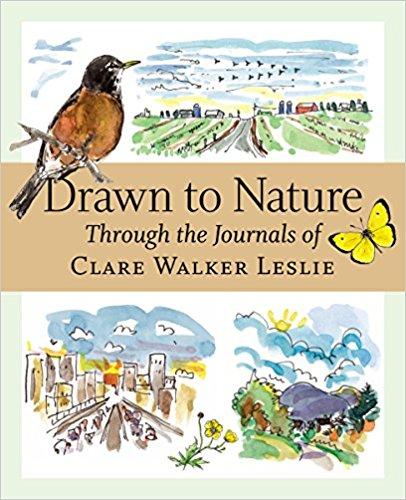 Drawn to Nature.jpg