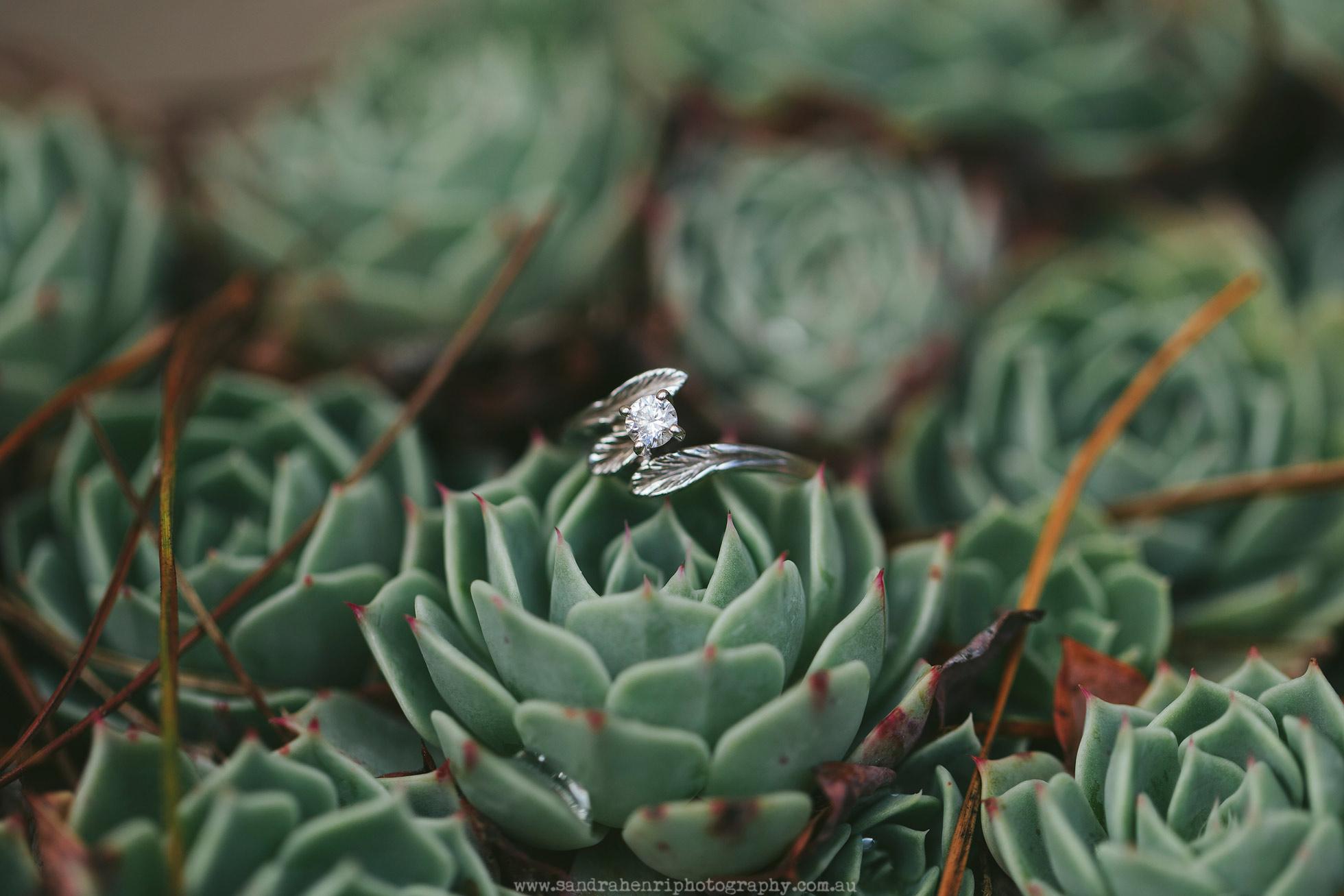 Wedding-photographer-Mali-Brae-Farm-16.jpg
