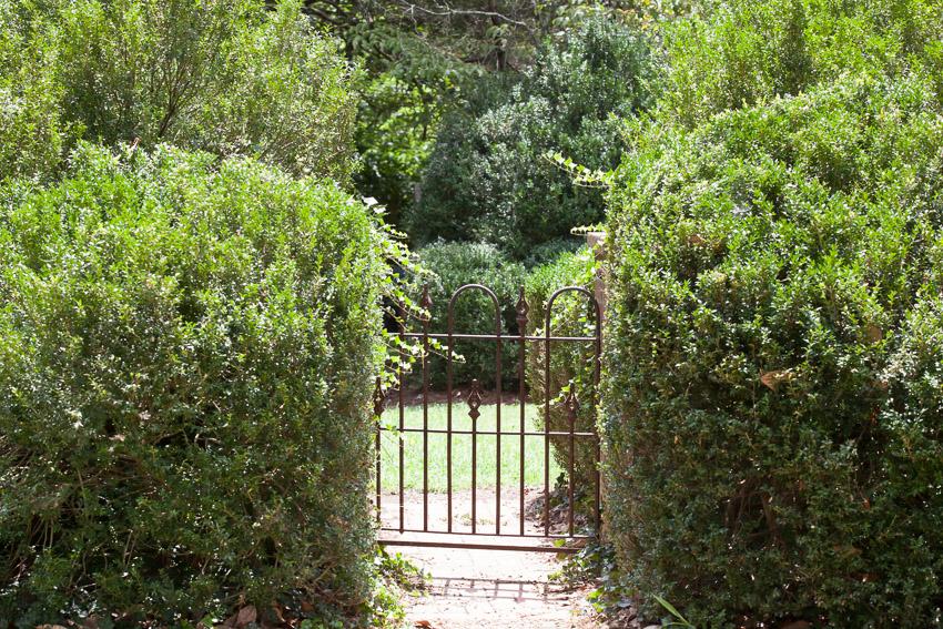 rustic iron gate