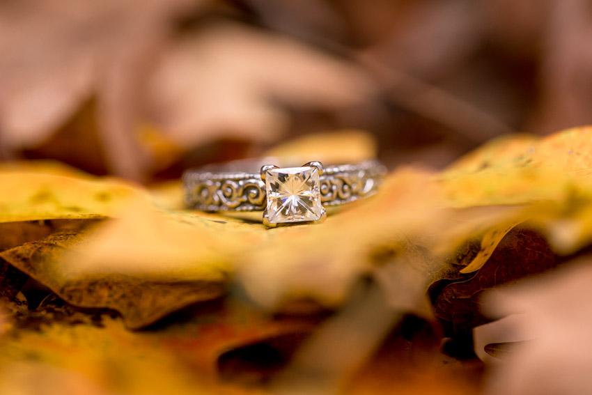engagement-rings-on-leaves.jpg