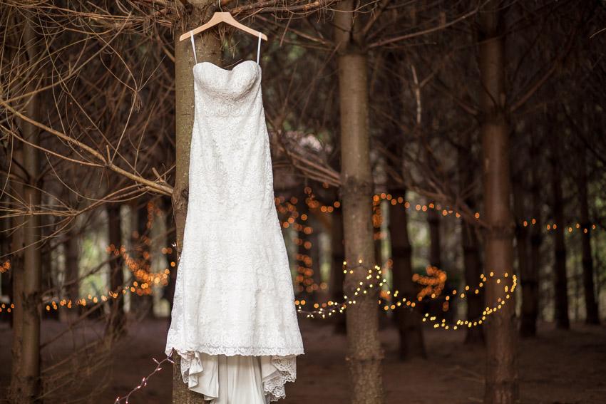 wedding-dress-in-pine-forest.jpg
