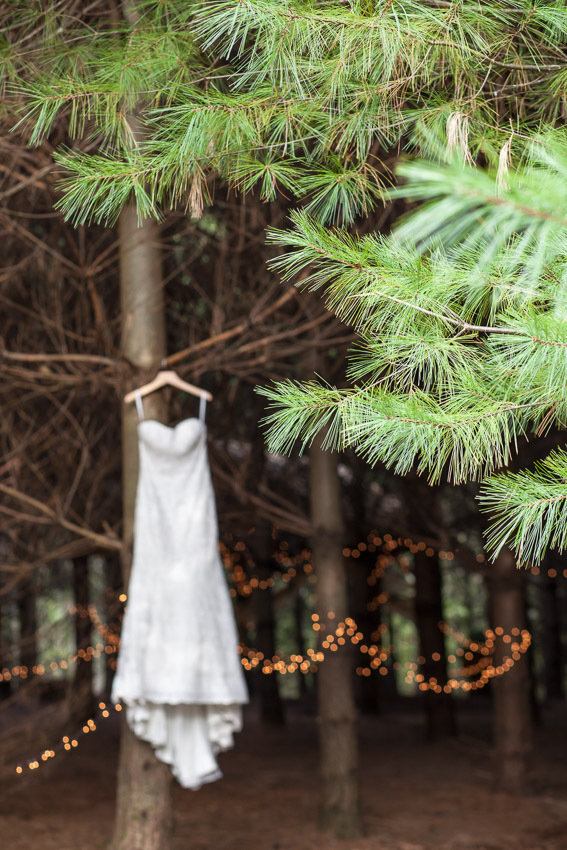 pine-forest-wedding-with-twinkle-lights.jpg