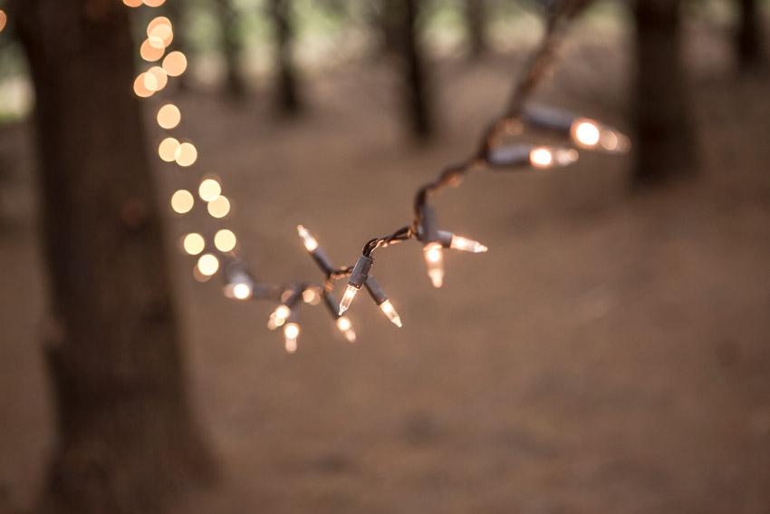 wedding-day-string-lights.jpg