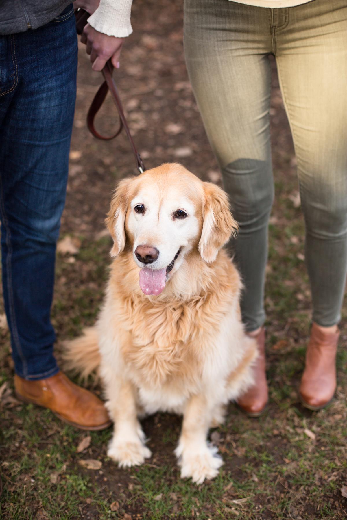 Lauren-and-Grant-Engagement-Centennial-Park-Nashville-Sneak-Peak-0008.jpg