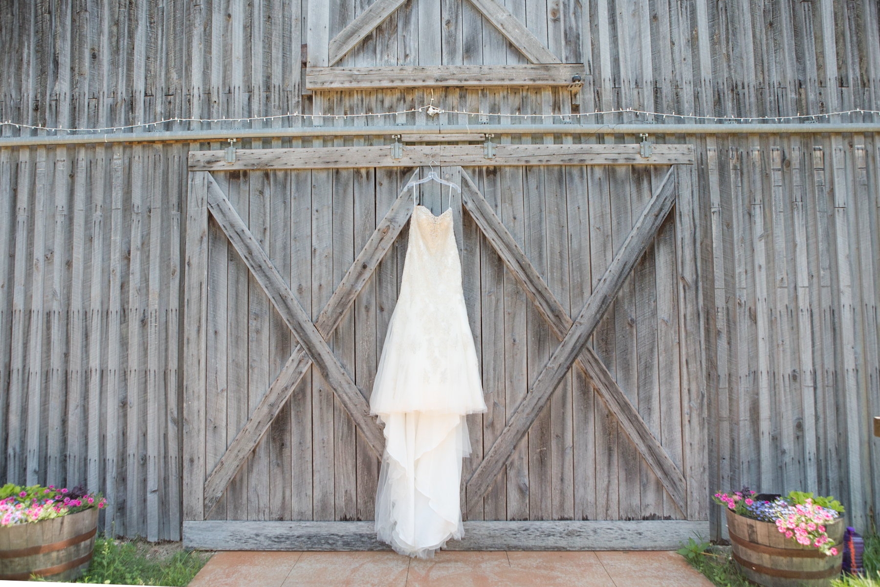 Cactus Creek Barn Wedding Michelle and Robert-1000.jpg