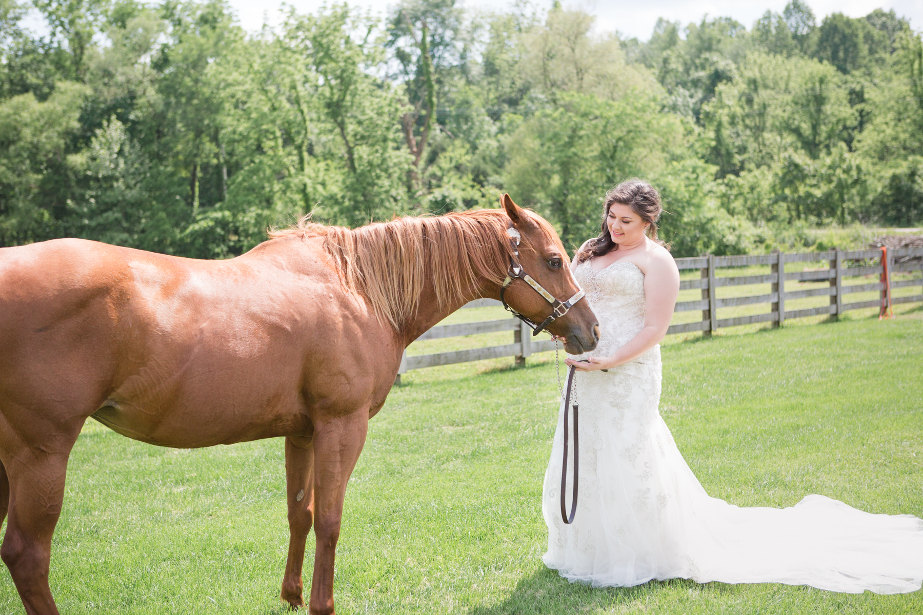 bride-with-horse-cactus-creek-barn.jpg