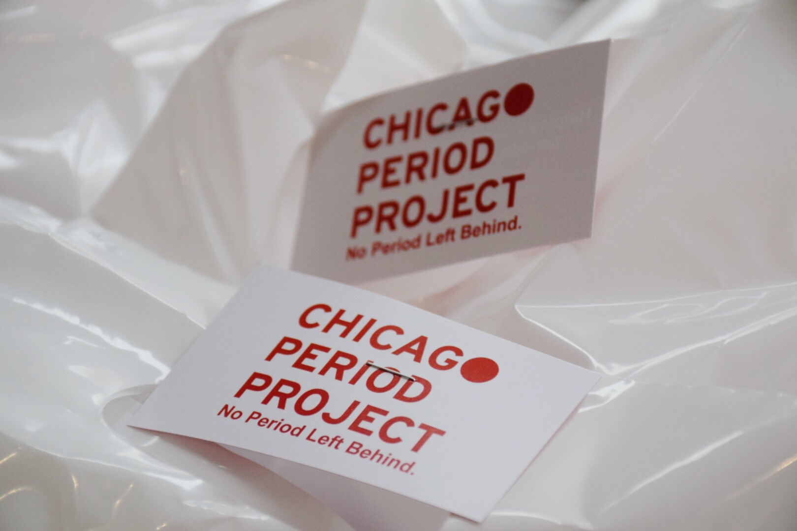 CHICAGO PERIOD PROJECT
