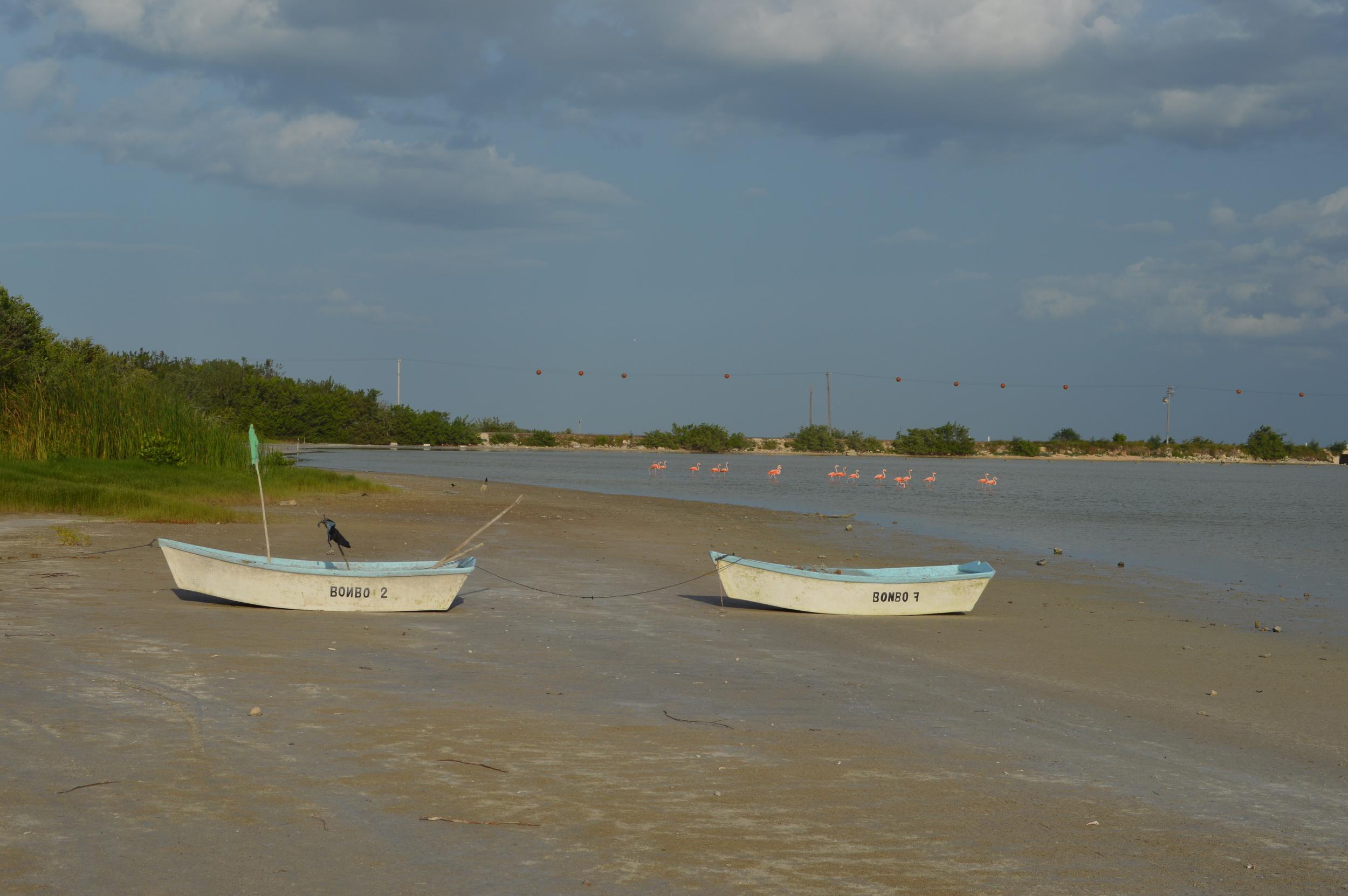 Lagoon El Cuyo