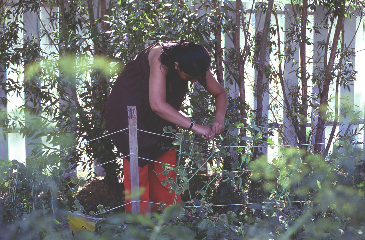 Gardening has always been a part of my life in one form or another.    My mother - early 80s.