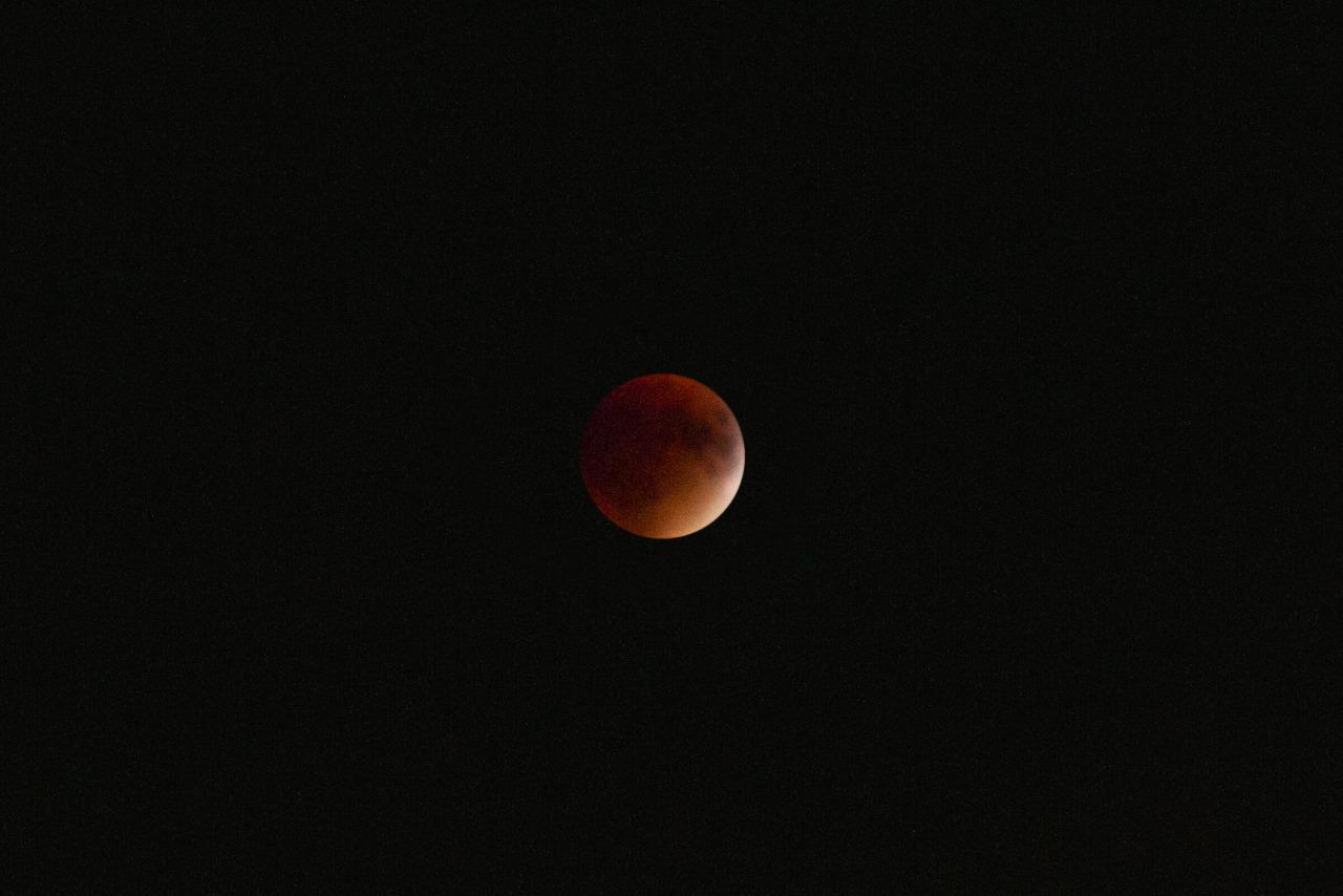 Supermoon lunar eclipse!  Spruce Street, Winnipeg.
