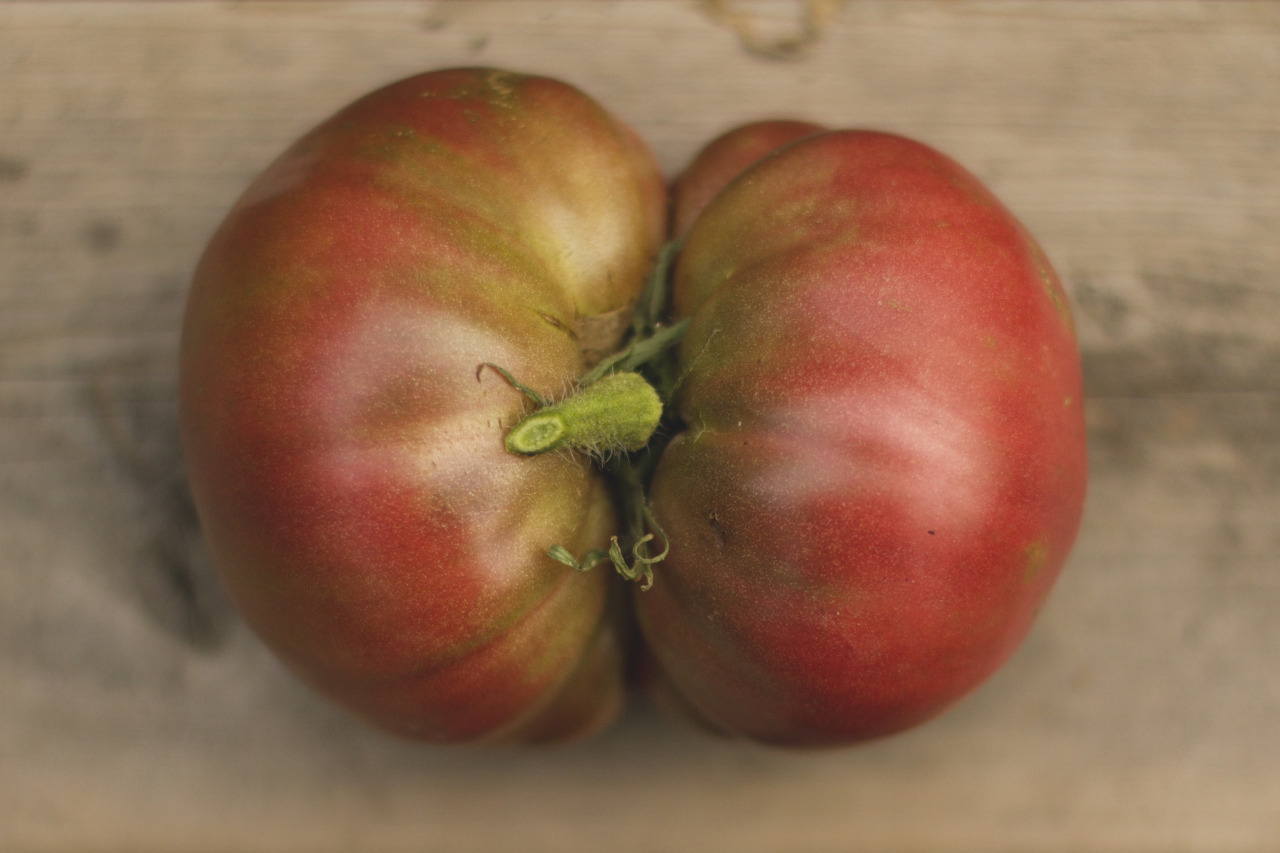 This tomato is rude.