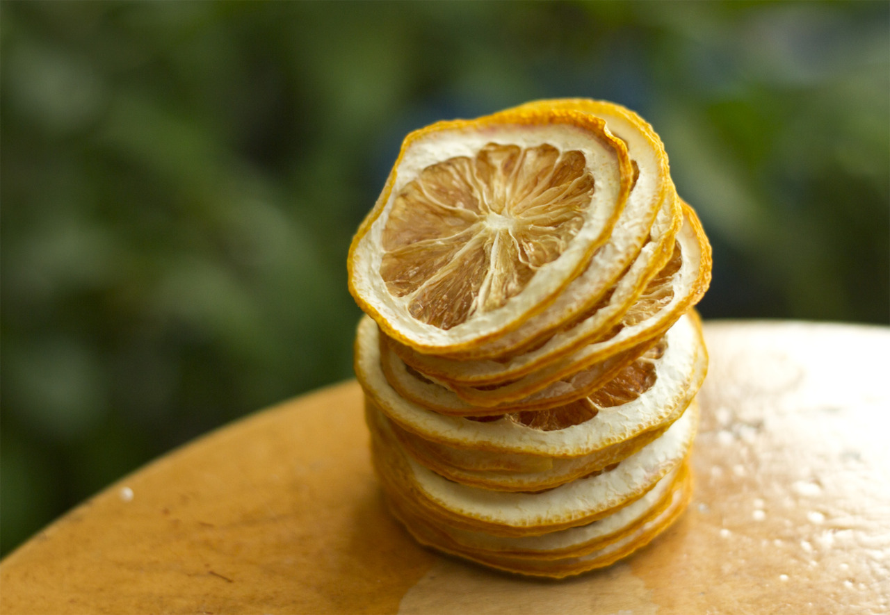 Lemon slices (a photo from my first summer with a food dehydrator - 2010)