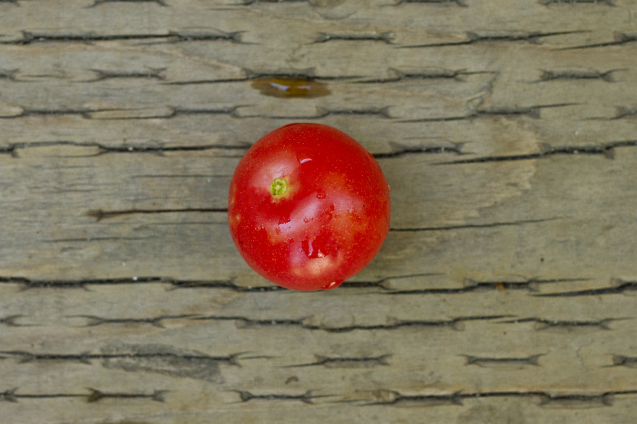 First cherry tomato!