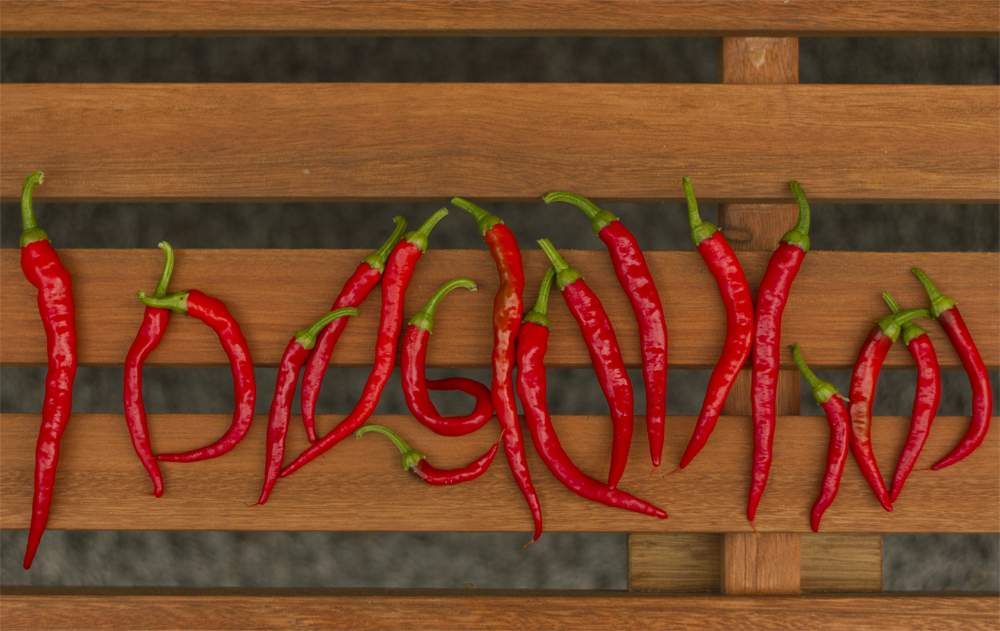 Wednesday evening harvest - 18 cayenne peppers!