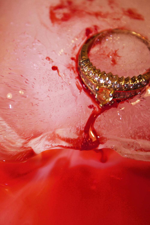 portrait+ring+211.jpg