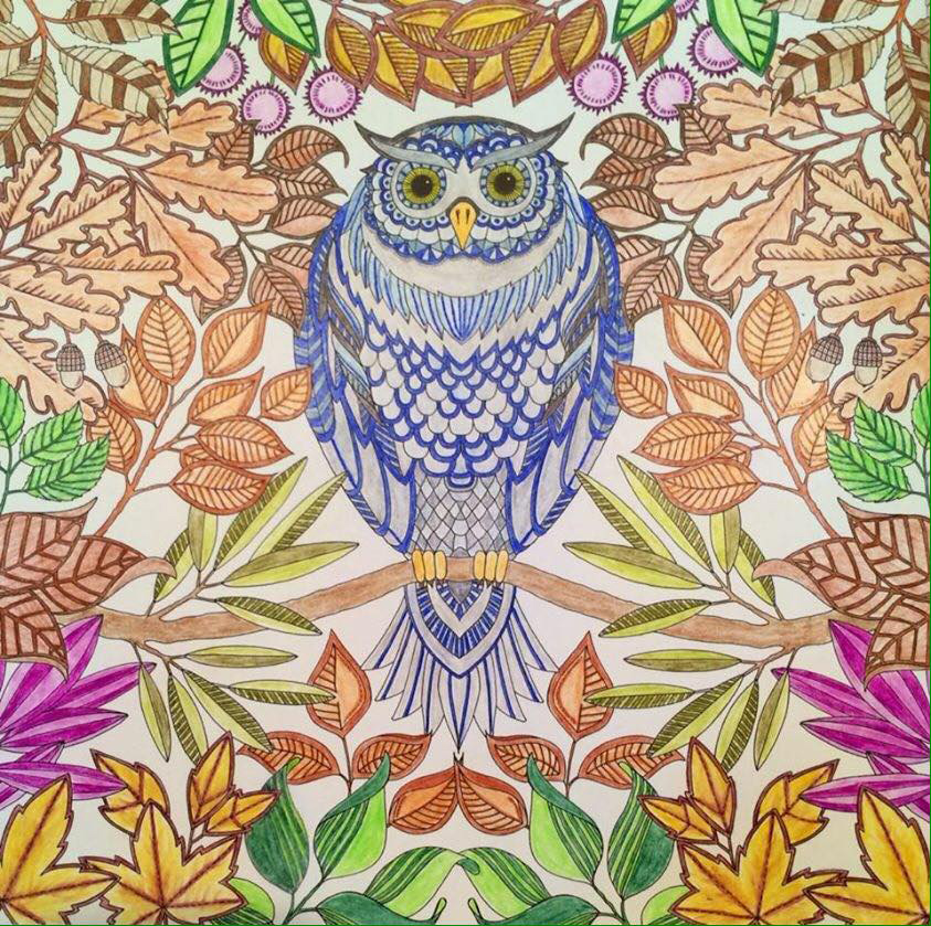 "Coloring courtesy of Shelly Durham. Notice the ""cool"" owl surrounded by the ""warm"" foliage. Illustration from Secret Garden © Johanna Basford"