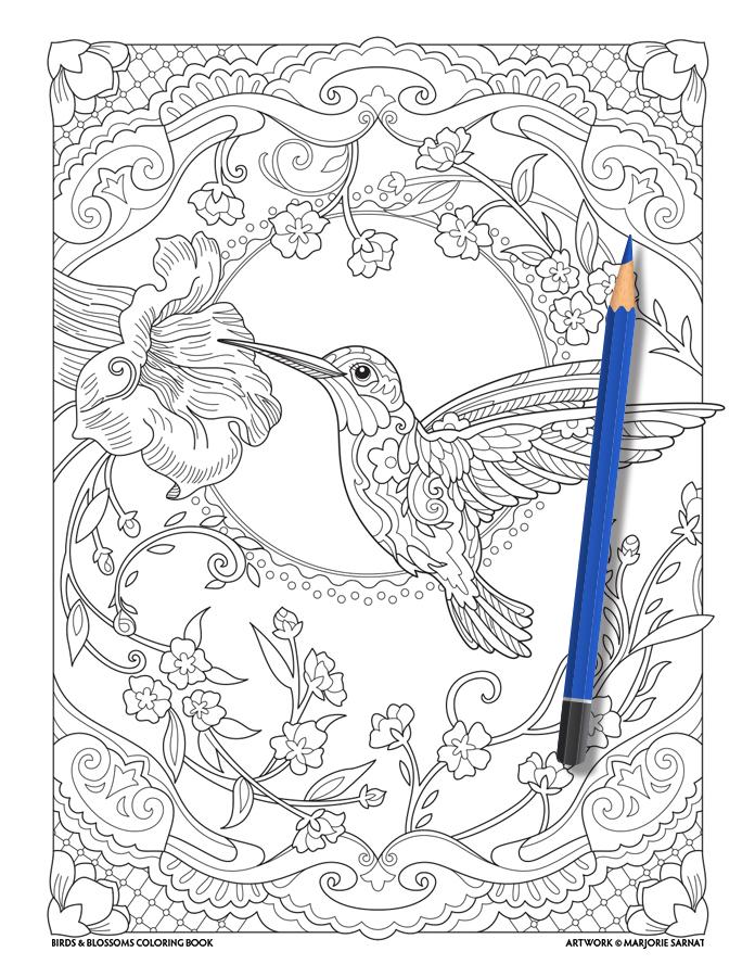 Hummingbird FINAL