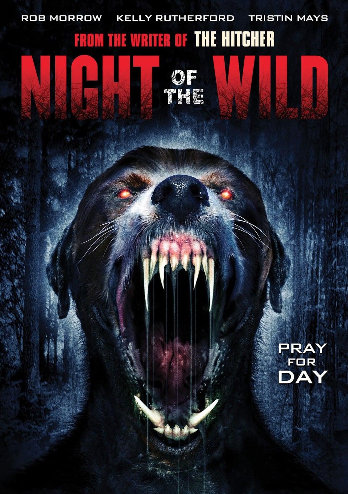 Night of the Wild.jpg