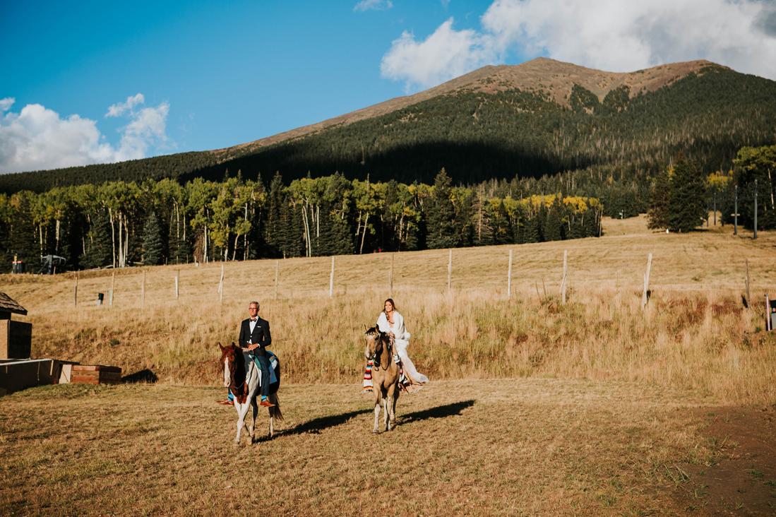 equestrian wedding.jpg