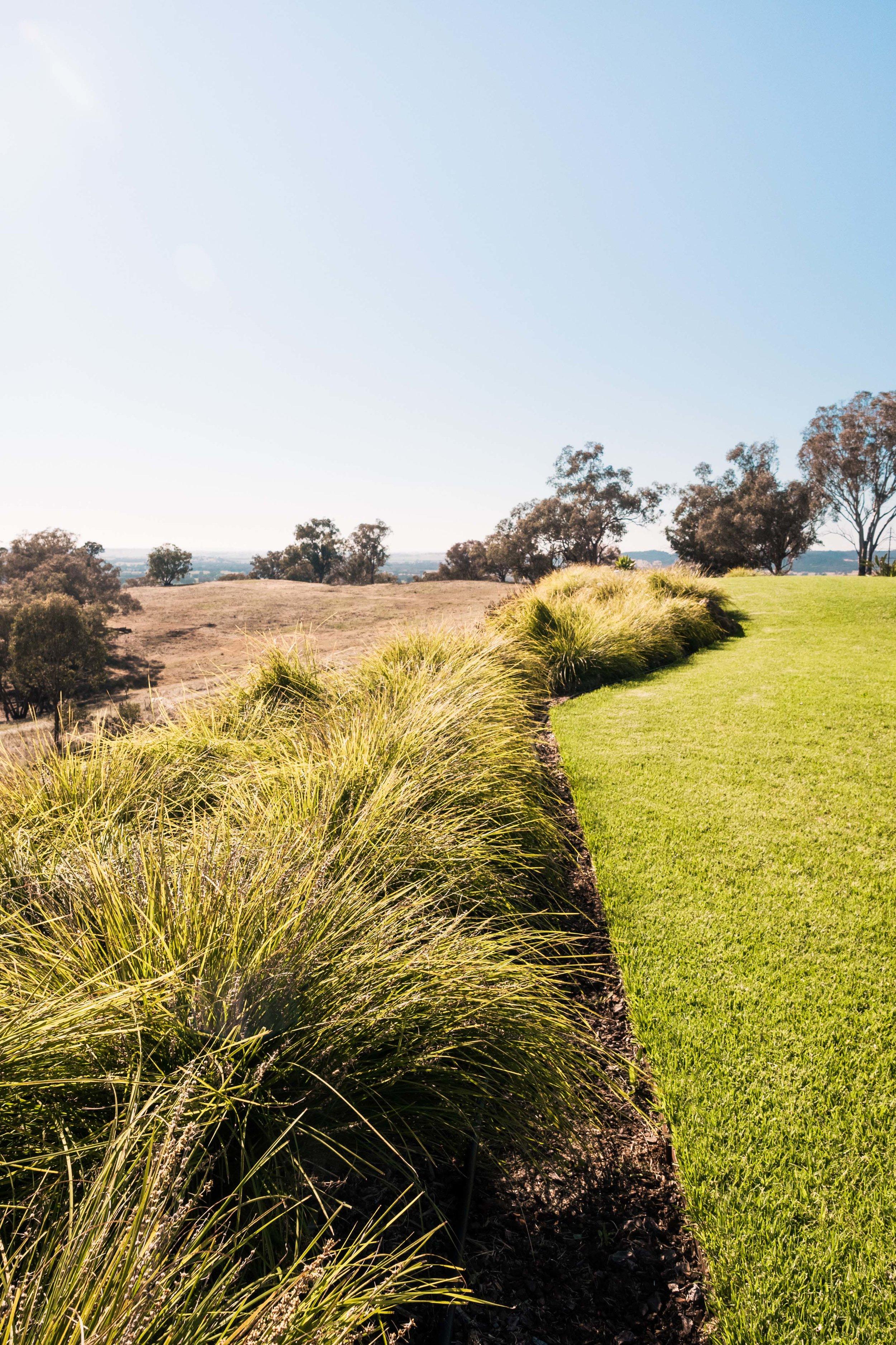 Somewhere Landscape Architects_GARDEN #2 (1)