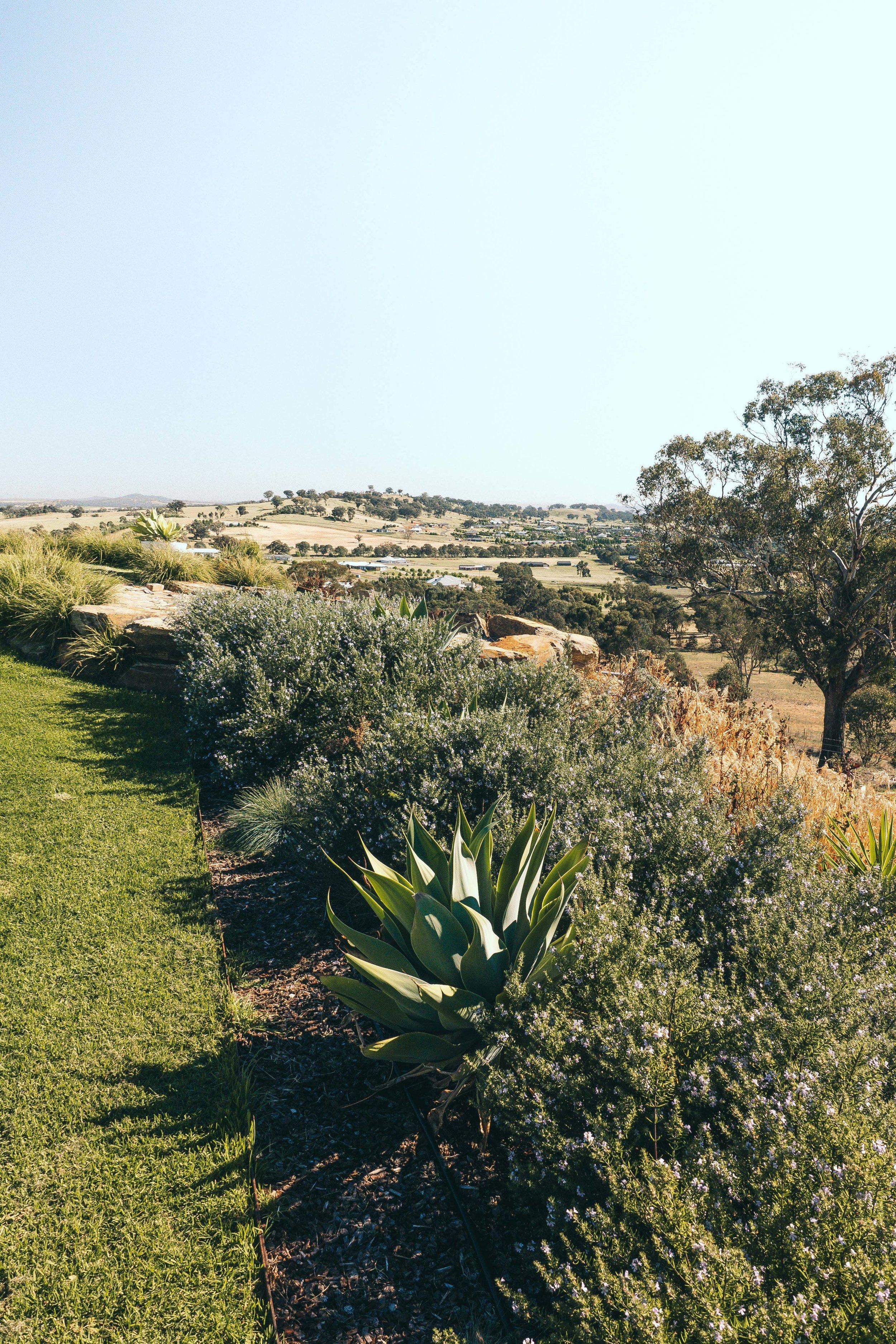 Somewhere Landscape Architects_GARDEN #2 (5)