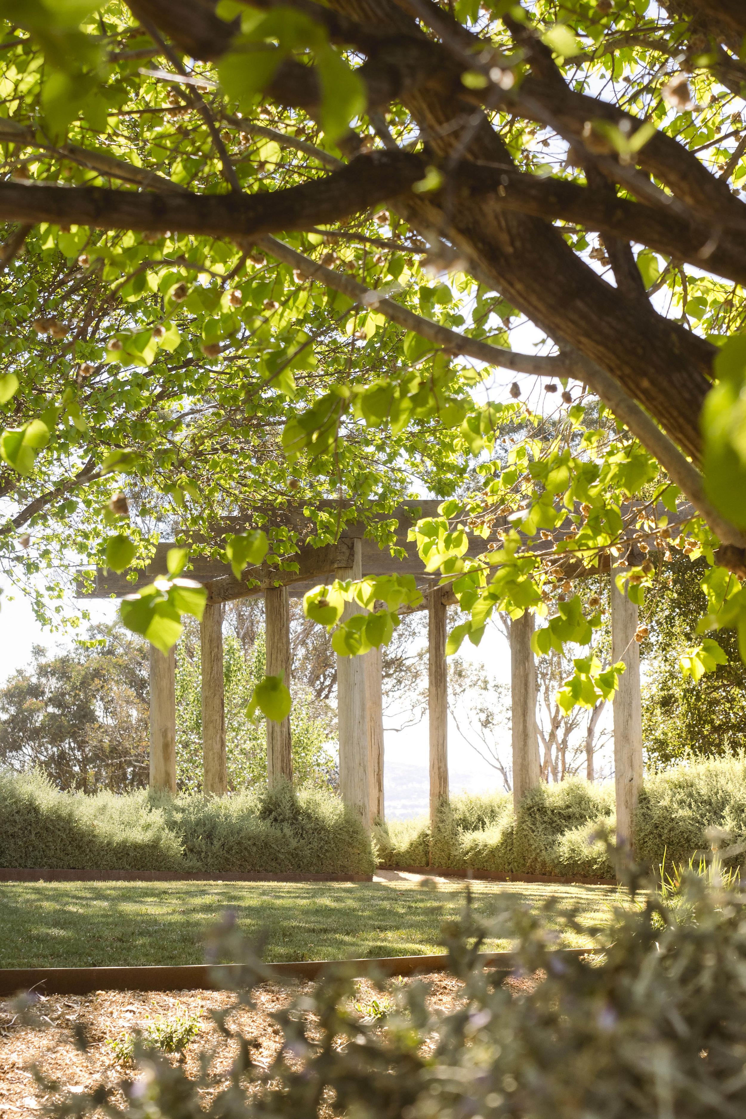 Somewhere Landscape Architects_GARDEN #3 (7)